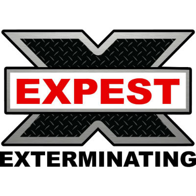 Expest Exterminating Pest Control Snellville