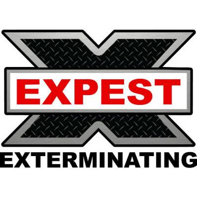 expest
